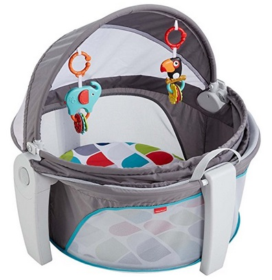 3a346f18316f9c Fisher-Price On-the-Go Baby Dome